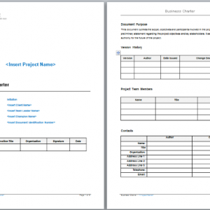 Business Charter Template
