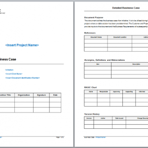 Detailed Business Case Template